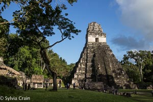 My, an impressive place - Tikal.  Busy on New Years Day.