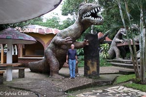 A view of a dino with Jim at the hotel.This dino has stairs and a slide inside.