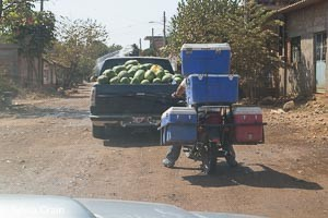 Melons and fish or shrimp on their way to market. Both vehicles very commonly seen.
